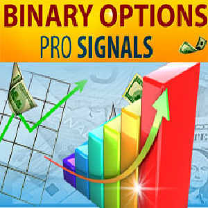 Binary options courses