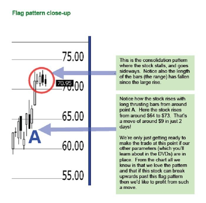 Flag Trader-Pattern Close Up
